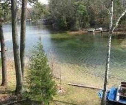 Mickey Lake